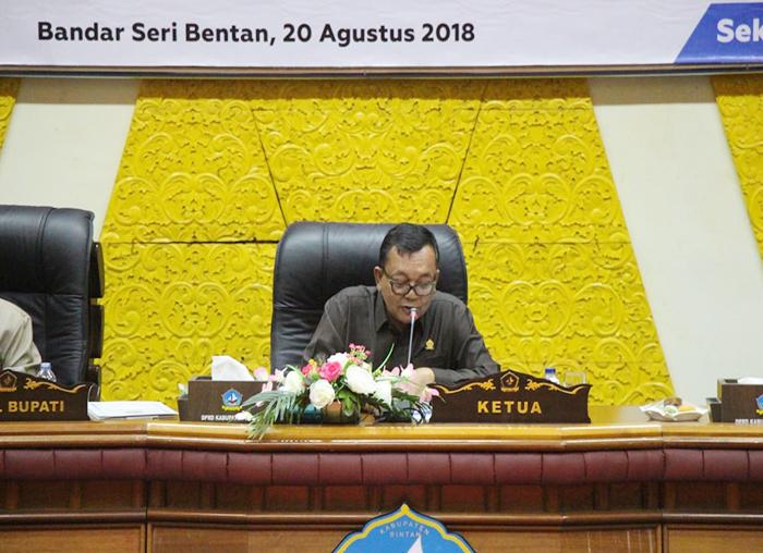 Ketua DPRD Bintan Nesar Ahmad saat membuka Rapat Paripurna