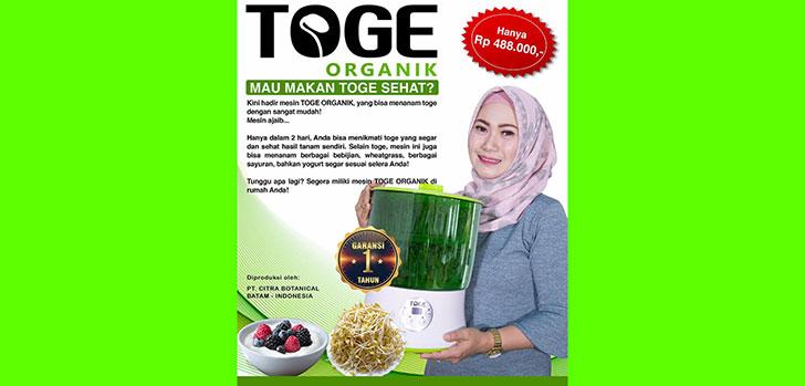 Toge-Organik.jpg
