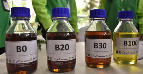 b0-b100.jpg