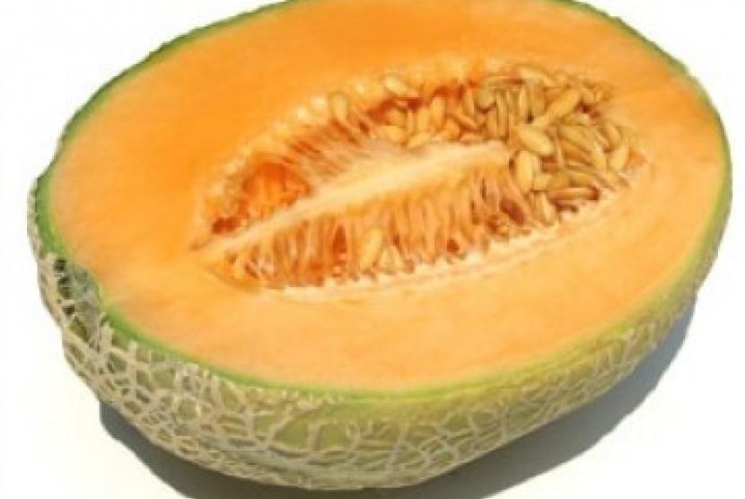 buah-melon.jpg