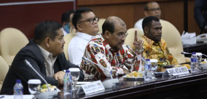 dpd_papua_freeport1.jpg
