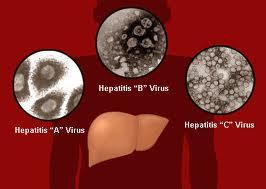 hepatis.jpg