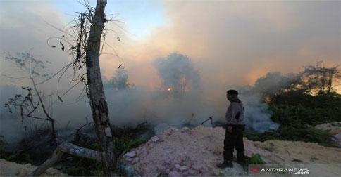 kebakaran-hutan-riau12.jpg