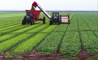 Teknologi Pertanian Hemat Sda