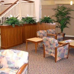 tanaman_indoor.jpg